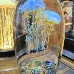Richard Santava Jellyfish